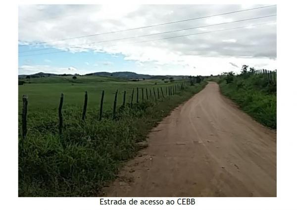 TIMBAUBA - Fazenda Salgadinho - 162767 m²